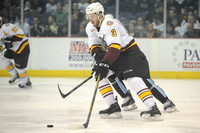 AHL 2015: Milwaukee Admirals vs Chicago Wolves APR 18